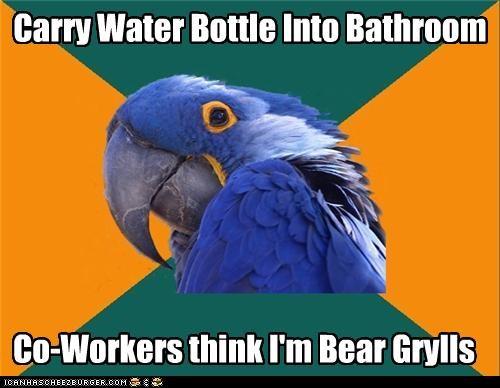 Paranoid Parrot,pee,water,work