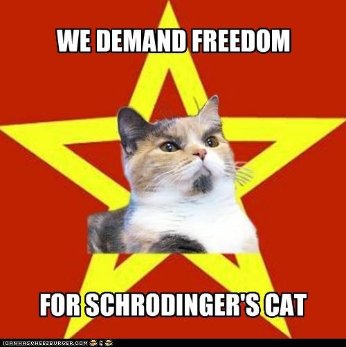 animemes,freedom,Lenin Cat,potential,prisoners,shrodingers-cat