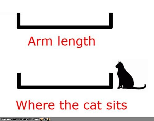 annoying arms length Cats Chart far graph pet petting - 4625047552