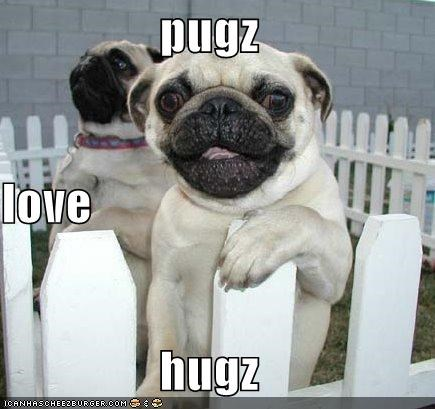 happy hug hugging hugs love pugs rhyme smiling truth - 4625216768