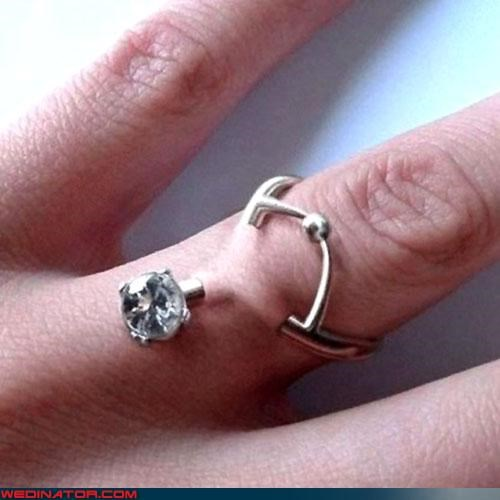 engagement ring funny wedding photos rings wedding rings - 4625220864