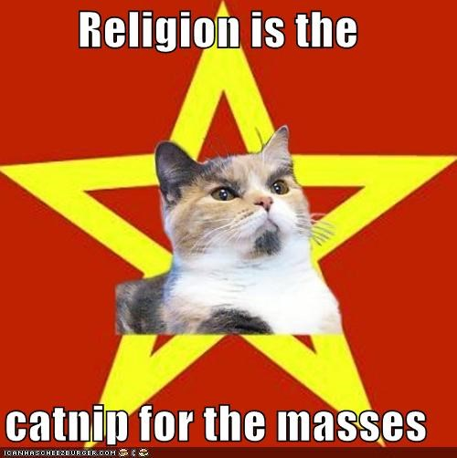 catnip Lenin Cat masses sunspots - 4625469952