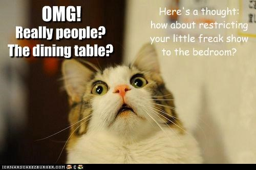 cannot,caption,captioned,cat,disbelief,do not want,indignant,omg,really,shocked,suggestion,surprised,table,unsee