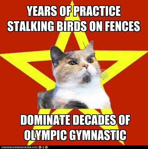 YEARS OF PRACTICE STALKING BIRDS ON FENCES DOMINATE DECADES OF OLYMPIC GYMNASTIC