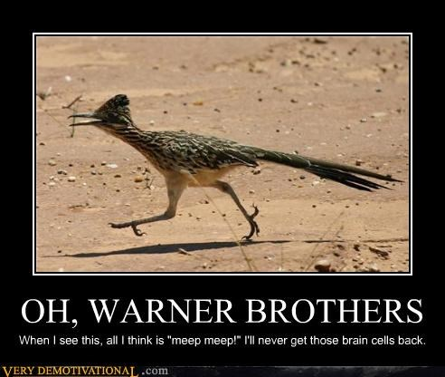 meep meep,road runner,warner brothers