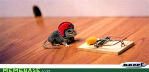 Challenge Accepted IRL mouse