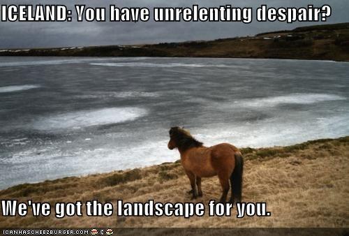 Iceland,landscape,pony,Sad