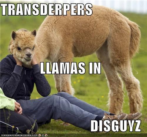 alpaca animals autobots cartoons critters movies transformers - 4628001280