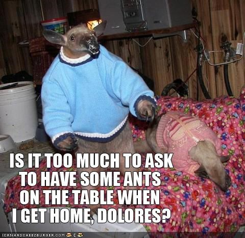 anteaters,ants,caption,captioned,dressed up,food,sweaters,table,tired,work