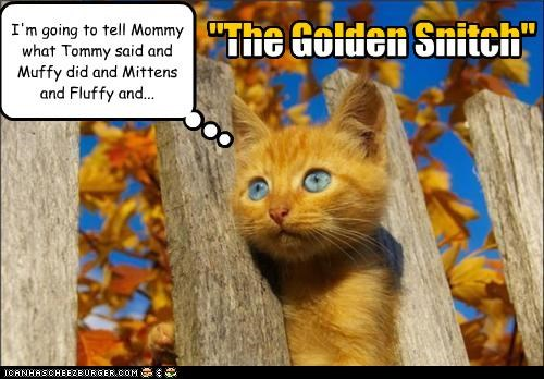 "I'm going to tell Mommy what Tommy said and Muffy did and Mittens and Fluffy and... ""The Golden Snitch"" ""The Golden Snitch"""