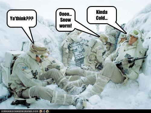 Kinda Cold... Ya'think??? Oooo... Snow worm!
