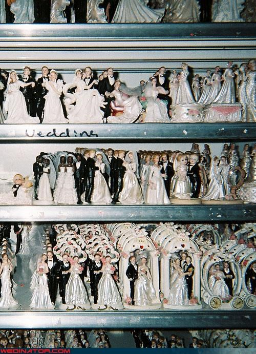 cake toppers funny wedding photos wedding cake - 4628840960