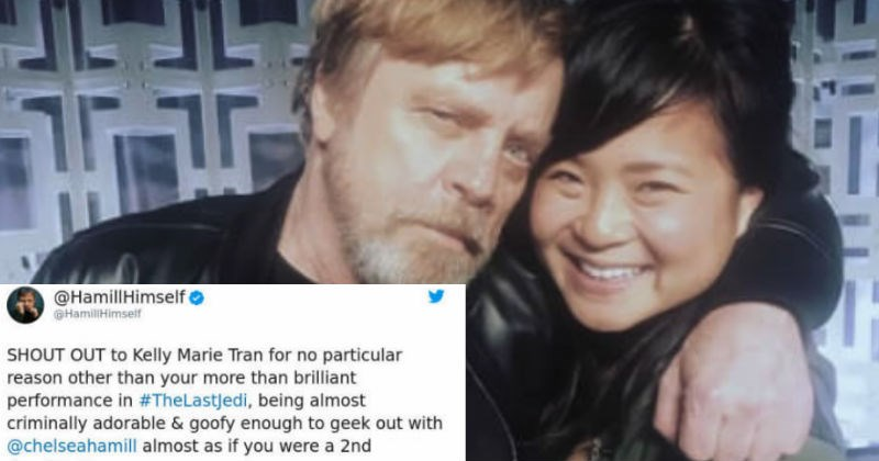 Mark Hamill owns a person on Twitter after they try to correct him over his grammar.