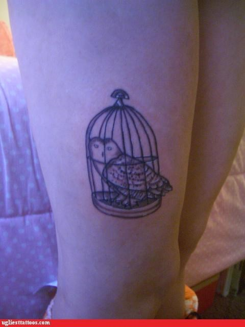 owls,cage,tattoos,funny