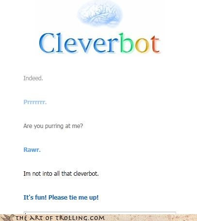 Cleverbot likes purring rawr sm - 4629419776