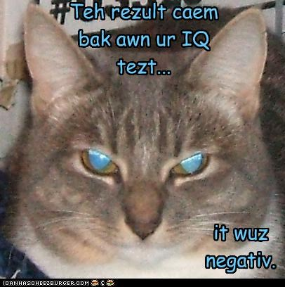 caption captioned cat IQ iq test negative result test - 4630262016