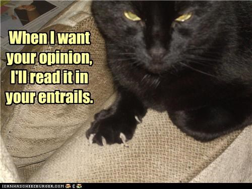 caption captioned cat divination entrails Hall of Fame method opinion promise read want when