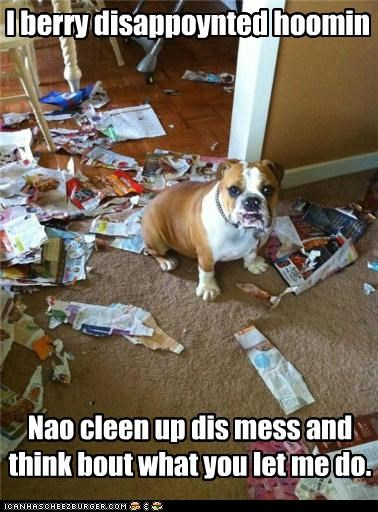 best of the week bulldog clean Command disappointed Hall of Fame i has a hotdog mess order permission punishment scolding scorn think very - 4630780928