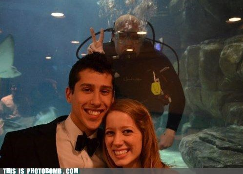 couple formal Moment Of Win scuba scuba steve - 4631248640