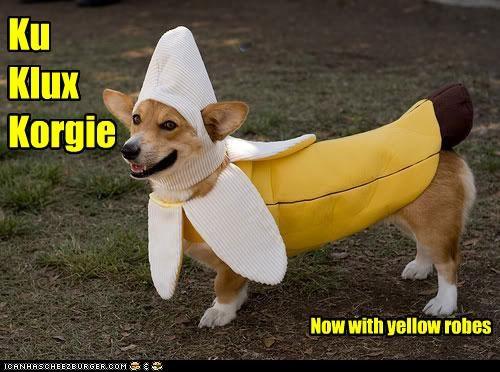 Ku Klux Korgie Now with yellow robes