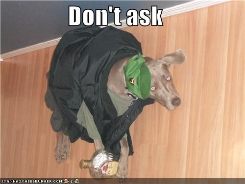 accident,alcohol,ask,Awkward,coat,confused,dont-ask,hat,weimaraner