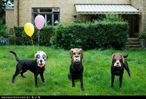 Balloons dogs masks Party