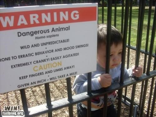 baby cute kids Parenting Fail signs warning - 4632318720