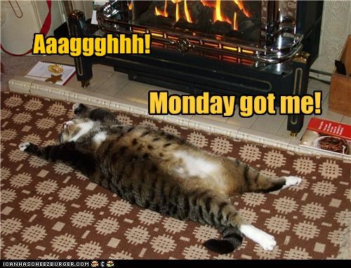 Aaaggghhh! Monday got me!