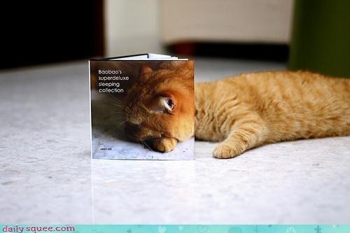 acting like animals art avant garde book cat centerfold cover life lolwut magazine mimetic recursive - 4632668928
