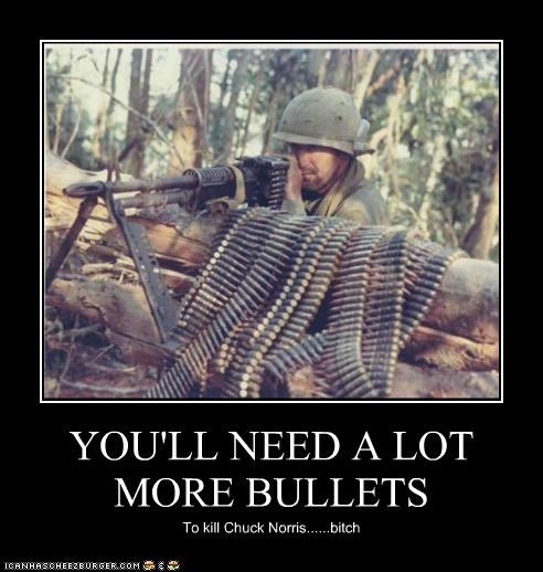 YOU'LL NEED A LOT MORE BULLETS To kill Chuck Norris......bitch