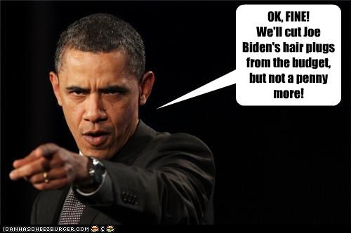barack obama joe biden political pictures - 4633260800