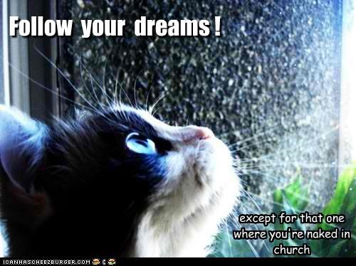 advice au natural caption captioned cat caveat church dreams except follow Hall of Fame - 4633586688