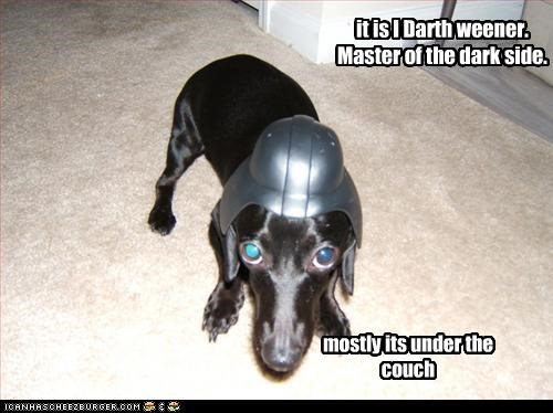 best of the week,costume,couch,dachshund,dark,dark side,darth vader,dressed up,Hall of Fame,helmet,i has a hotdog,master,mostly,star wars,under