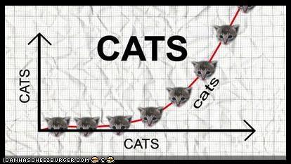 charts,graph,math,wtf
