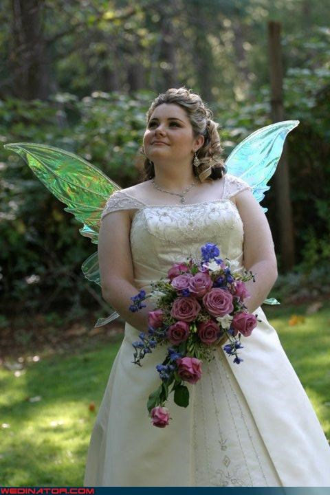 fairy wings,funny wedding photos