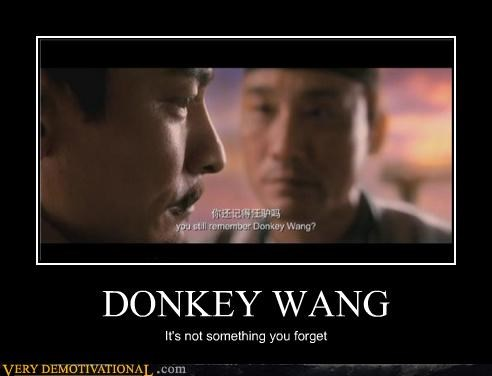 donkey,Movie,wang,wtf
