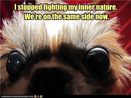 I stopped fighting my inner nature. We're on the same side now.