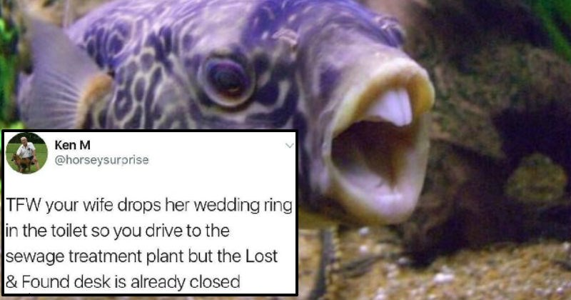 Collection of times Ken M trolled people on social media, and it was hilarious.