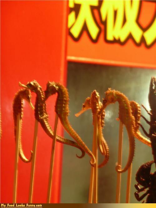 asian,dried,fried,seahorse,snack,stick,street food