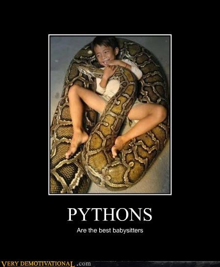 animals,babysitters,bad idea,pythons