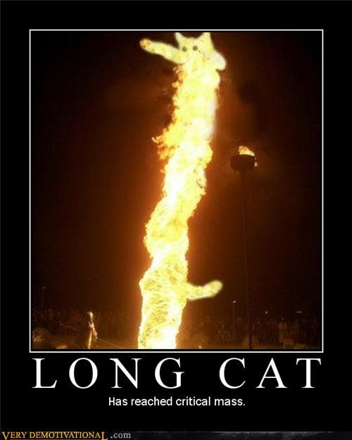 Critical Mass fire long cat