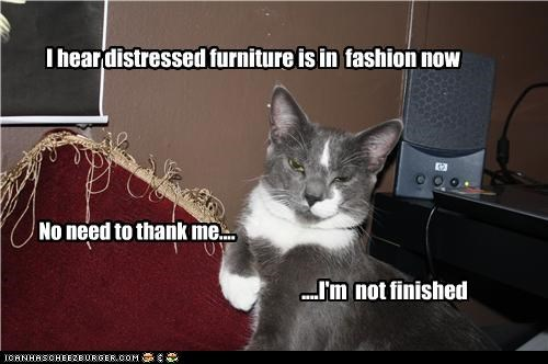 I hear distressed furniture is in fashion now No need to thank me.... ....I'm not finished