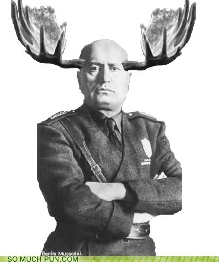 alces benito mussolini homophone homophones juxtaposition literalism moose scientific name similar sounding - 4643988224