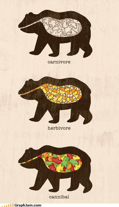 bears candy food infographic - 4644570112