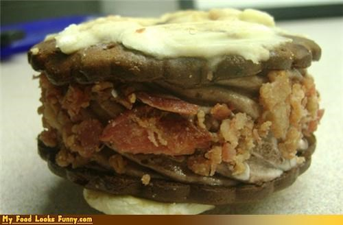 My Food Looks Funny Sandwich Page 6 Funny Food Photos Cheezburger