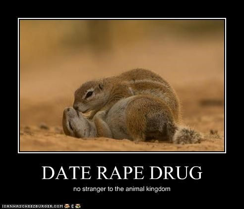 DATE RAPE DRUG no stranger to the animal kingdom