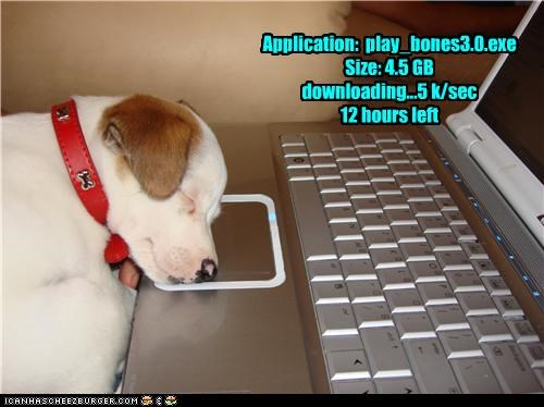 Application: play_bones3.0.exe Size: 4.5 GB downloading...5 k/sec 12 hours left