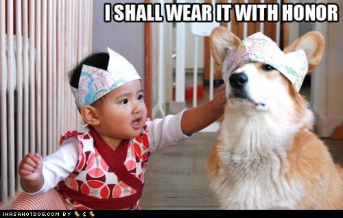 baby,best of the week,corgi,crown,Hall of Fame,honor,i has a hotdog,knight,paper,royalty,twins
