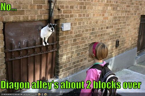 2,blocks,caption,captioned,cat,correction,diagon alley,directions,girl,Harry Potter,help,helping,hole,human,no,over,peeking,that way