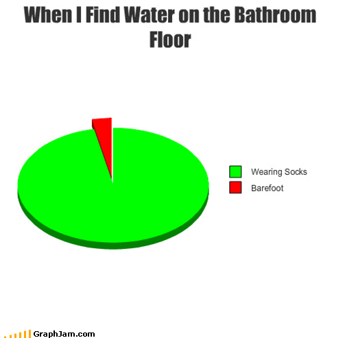 bathroom,floor,Pie Chart,socks,water